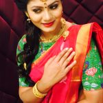 Shruti Reddy 2017 saree pics (6)