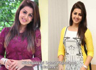 Nikkigalrani Latest Photoshoot Gallery