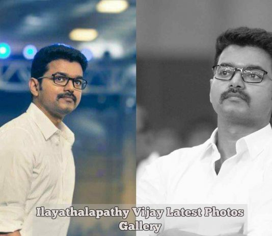 Ilayathalapathy Vijay Latest Photos Gallery