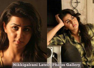 Nikkigalrani Latest Photos Gallery
