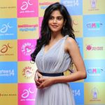 GGSR Audio Launch photos Gallery  (15)