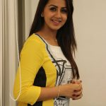 Nikkigalrani Latest Photoshoot Gallery (6)
