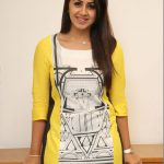 Nikkigalrani Latest Photoshoot Gallery (9)