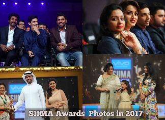 SIIMA Awards Photos in 2017