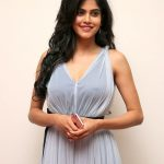 Aditi Pohankar 2017 new pictures (4)