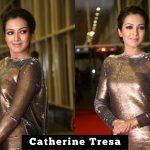 Catherine Tresa 2017 event (1)
