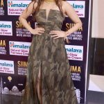 SIIMA Awards  Photos in 2017  (12)