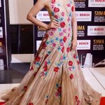 SIIMA Awards  Photos in 2017  (14)