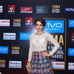 SIIMA Awards  Photos in 2017  (16)