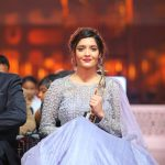 SIIMA Awards  Photos in 2017  (17)