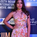 SIIMA Awards  Photos in 2017  (24)