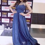 SIIMA Awards  Photos in 2017  (9)