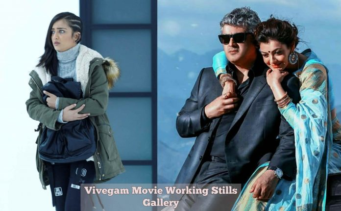 Vivegam Movie Working Stills
