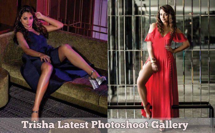 Actress Trisha Krishnan Latest Photoshoot Gallery