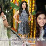 Nenjil Thunivirundhal Heroine Mehrene Kaur Pirzada Photos Gallery (23)