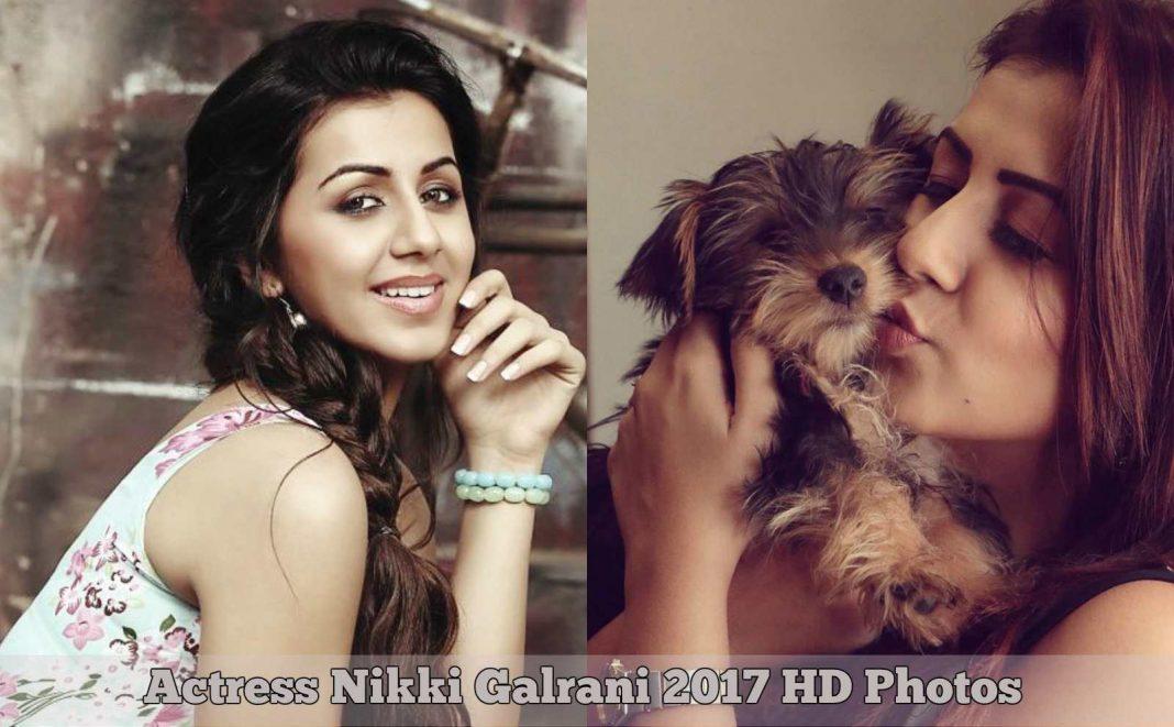 Actress Nikki Galrani HD Photos