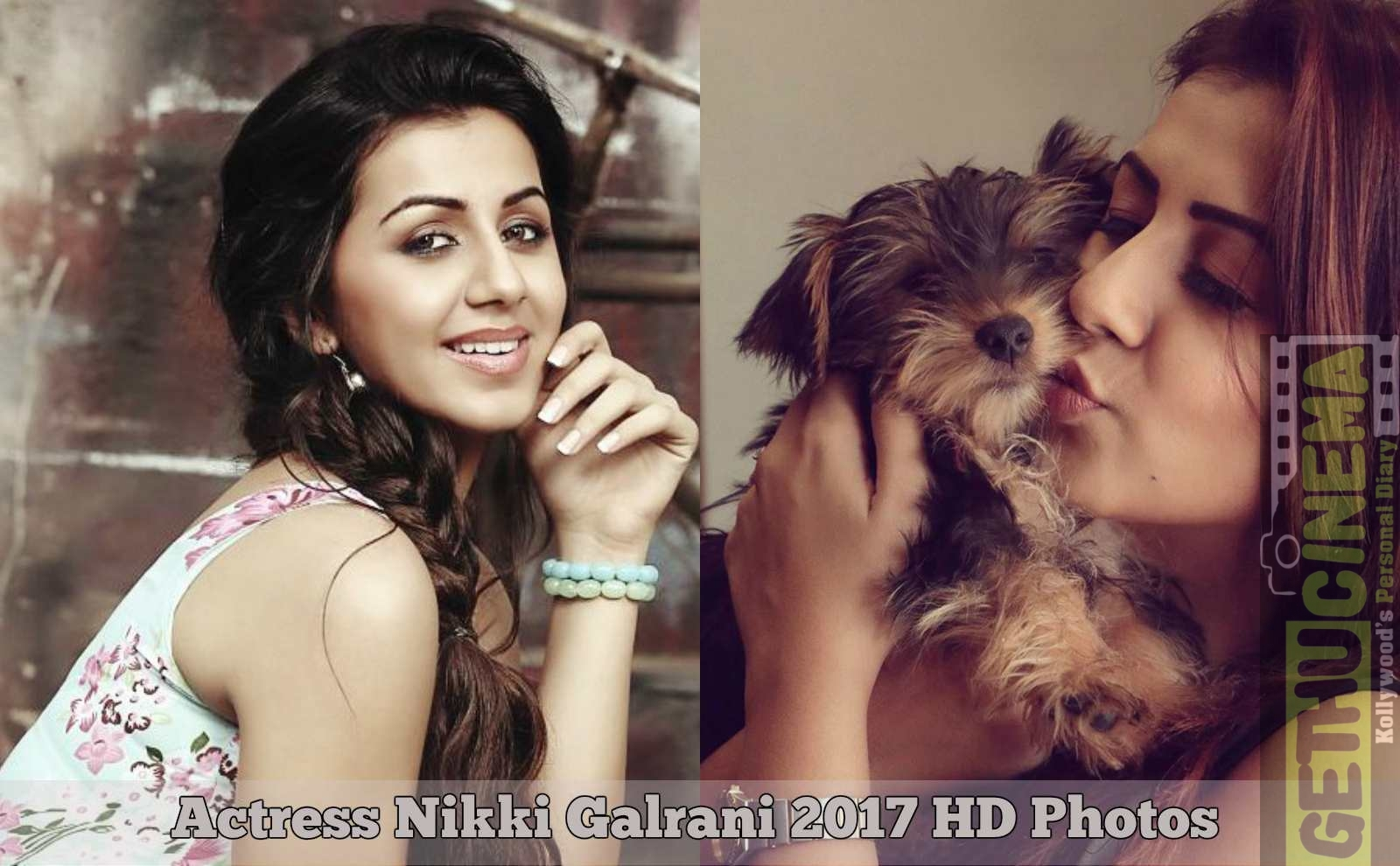 Actress Nikki Galrani 2017 HD Photos - Gethu Cinema