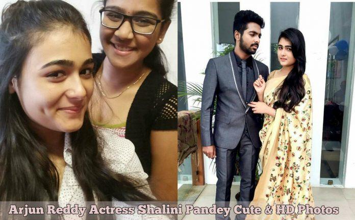 Arjun Reddy Actress Shalini Pandey Cute & HD Photos