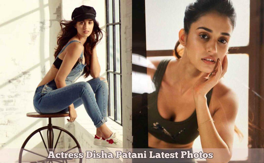 Disha Patani Photos