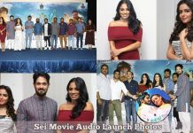 Sei Movie Audio Launch