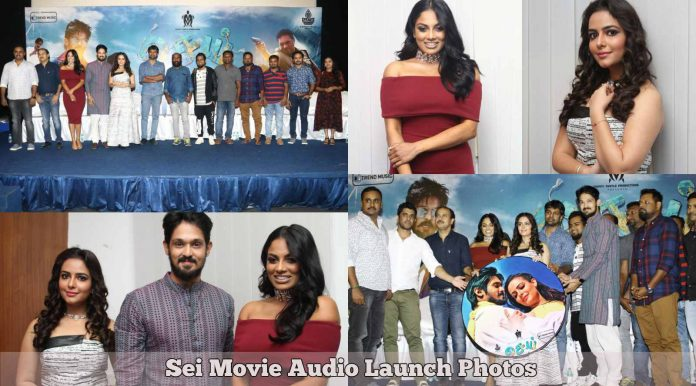 Sei Movie Audio Launch
