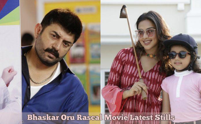 Bhaskar Oru Rascal Movie