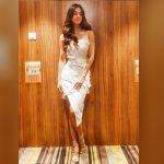 Actress Disha Patani Spicy Photos (23)
