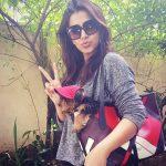 Actress Nikki Galrani HD Photos (12)