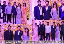 Samantha & Naga Chaitanya's Reception HD Photos