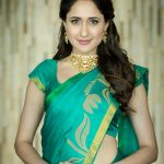 Actress Pragya Jaiswal Photos (17)