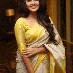 Anupama Parameswaran (20)
