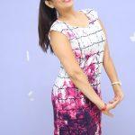 Manjusha (6)