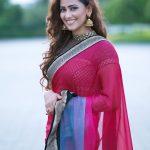 Sanjana Singh Photos (7)