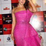 zee cinema Award  (4)