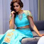 Nandita Swetha Photoshoot Stills (4)