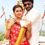 Pakka Movie Photos (5)