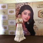 Pranitha Photos (10)