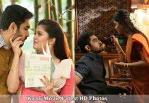 Kaali Movie, , Vijay Antony,Collage Photos , Shilpa Manjunath