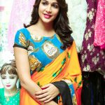 Lavanya Tripathi, Traditional look, Saree