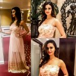 Meenakshi Dixit, collage, half