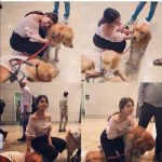 Shriya Saran, dog, pet animal