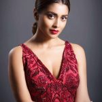 Shriya Saran, red dress, photoshoot