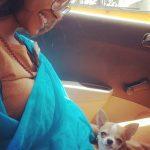 Anjali Patil, pet animal, cat