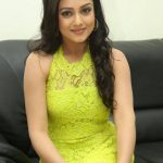 Mishti, Semma Botha Aagatha, light green, dressy