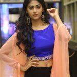 Palak Lalwani, Kuppathu raja Heroine,  2018, Photo Shoot