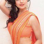 Pooja Kumar, Vishwaroopam 2 Heroine, admirable, Orange Saree, Glamour