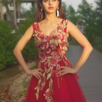 Vedhika red gown  (19)