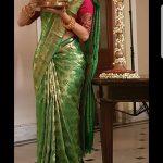 Vedhika traditional saree look photo  (10)