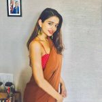 anaika soti photo brown saree red and white sleeveless blouse (26)