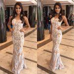 anukreethy vas Miss TamilNadu India 2018  long white gown transparent  (32)